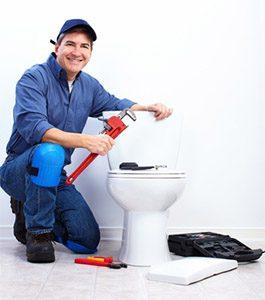 toilet repair kingsgrove